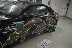 BMW 6 er Camouflage